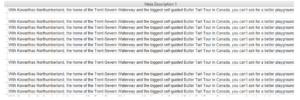 Great meta descriptions improve CTR for SEO